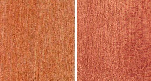 Rodzaje i właściwości drewna